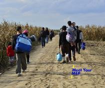 Refugiati din diferite tari, la granita sarbo-croata