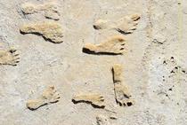 Cele mai vechi urme umane din America