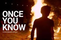 """Filmul """"Once you know"""", Astra Film Festival"""