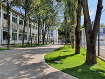 Liceului Tehnologic Dacia 13