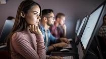 Din luna noiembrie la LINK Academy: Un nou program de şcolarizare, ideal pentru începătorii în IT