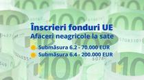 Fonduri europene - afaceri neagricole la sate